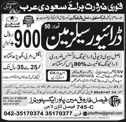Driver Sales man visa jobs