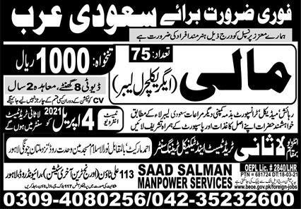 Agriculture Labours Jobs in Saudi Arabia